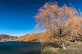 New Zealand Blog-7